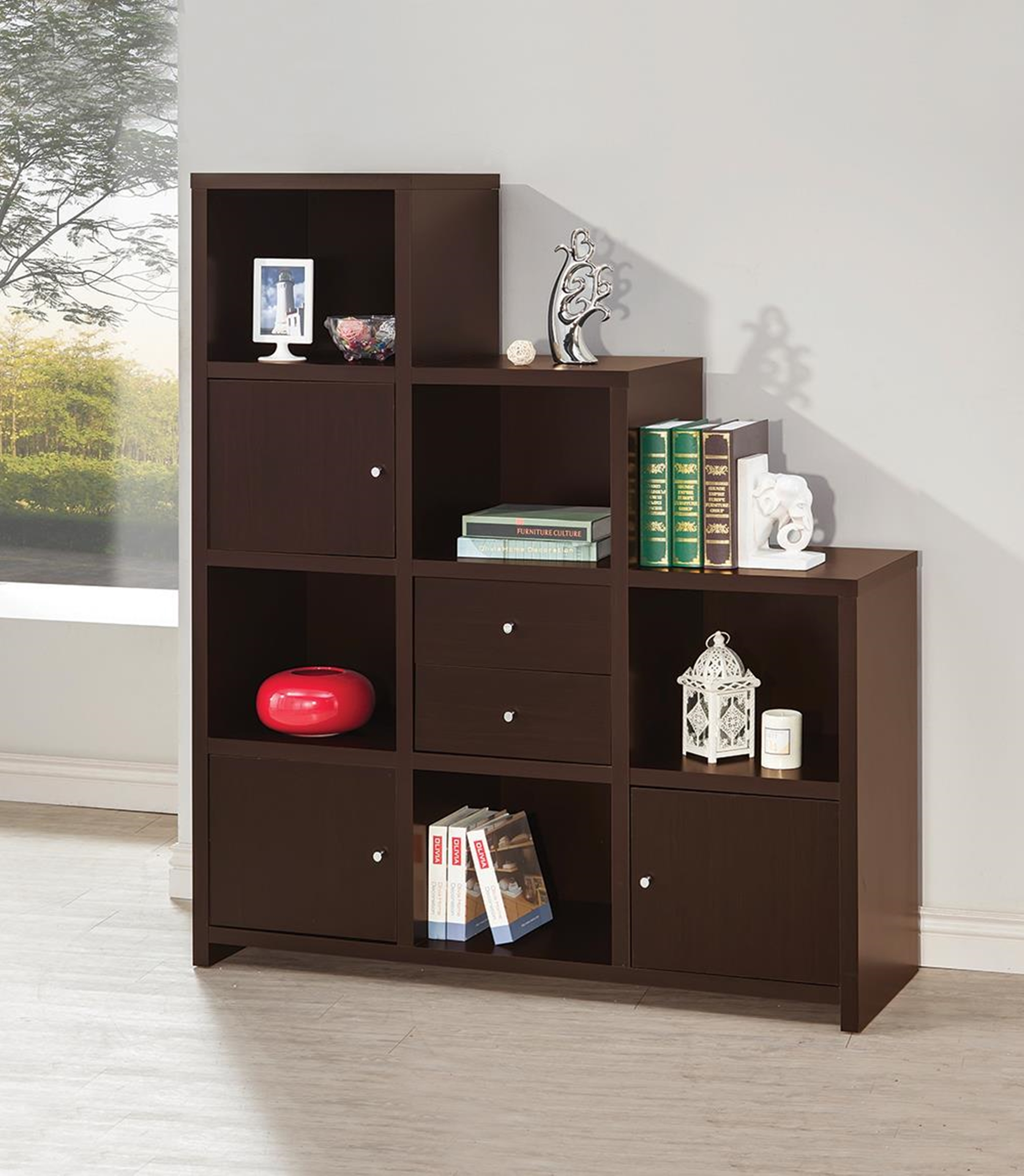 Contemporary Capp. Bookcase